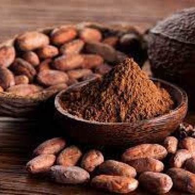 BỘT CACAO GREEFOOD
