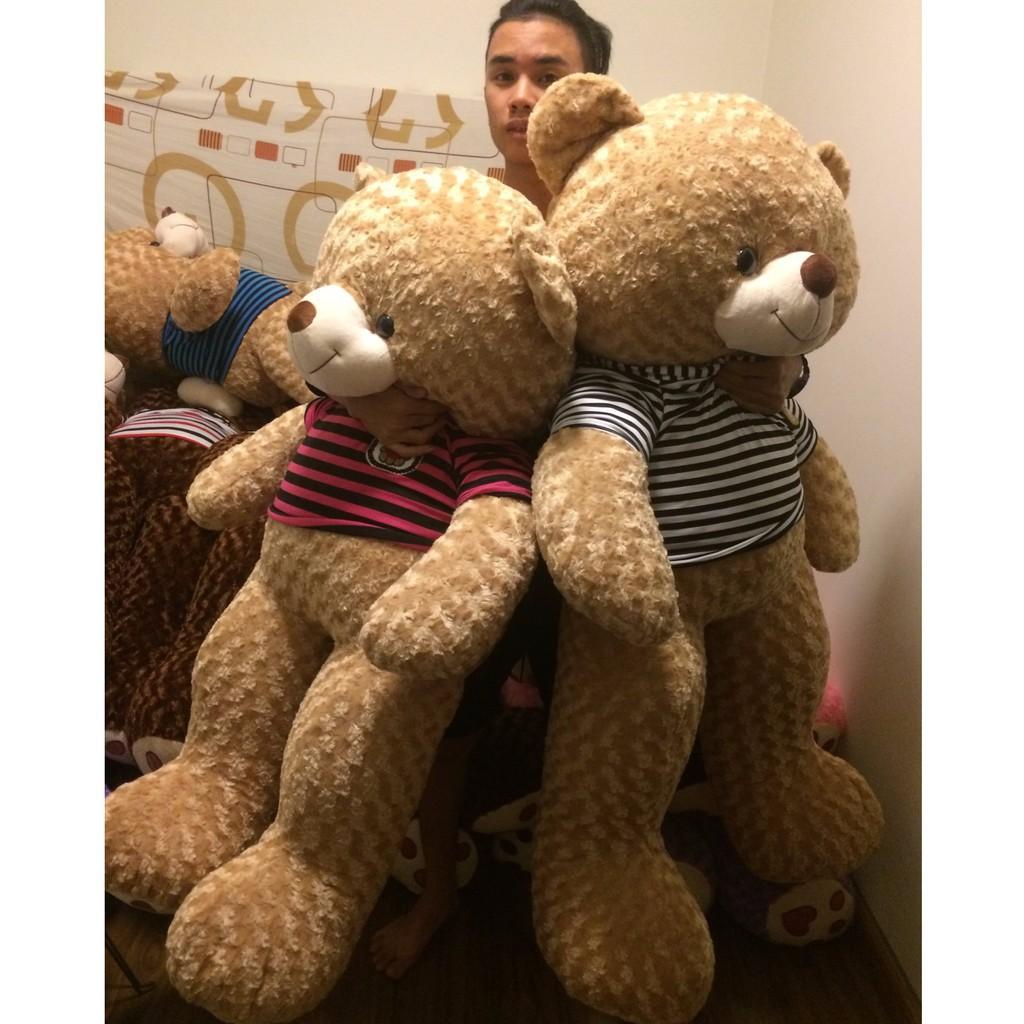 Gấu Teddy khổ vải m6