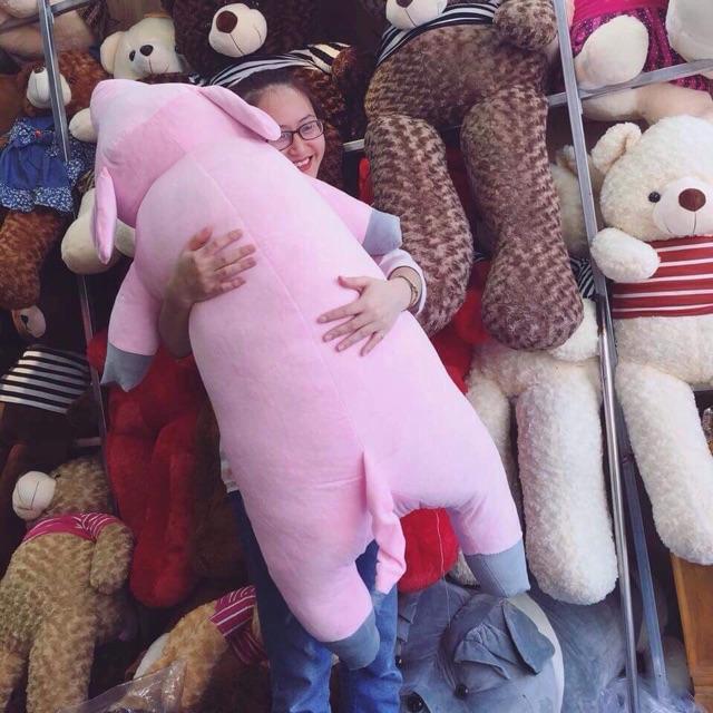 Lợn ngủ khổ vải 1m5